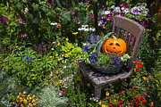 Baskets Posters - Pumpkin in basket on chair Poster by Garry Gay