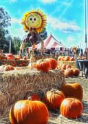 Cindy Nunn - Pumpkin Patch 4