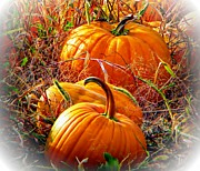 Frizzell Posters - Pumpkin Patch Poster by Michelle Frizzell-Thompson