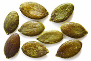 Kitchen Photos Prints - Pumpkin Seeds Print by Craig Brown