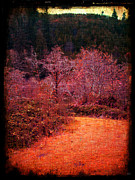 Bare Trees Mixed Media Metal Prints - Pumpkin Spice Winter Metal Print by Absinthe Art By Michelle LeAnn Scott