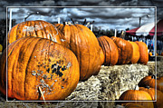 Cindy Nunn - Pumpkins 3