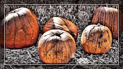 Cindy Nunn - Pumpkins 7