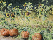 Martha Shilliday - Pumpkins and Sunflowers