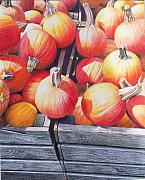 Pumpkins Paintings - Pumpkins by Constance Drescher