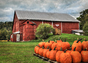Barn Digital Art Prints - Pumpkins for Sale Print by Lori Deiter