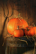 Pumpkins On Wine Barrel  Print by Sandra Cunningham