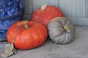 Jack-o-lanterns Photos - Pumpkins With Blue Planter by Art Block Collections