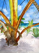 Banana Art Posters - Punta Cana Beach Palm Poster by Carlin Blahnik