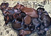 Sleeping Dogs Mixed Media Prints - Puppy Breath Print by Lena Quagliato-Miller