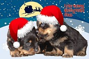 Puppies Digital Art - Puppy Christmas I saw Mummy Kissing Santa Claus  by Tracey Harrington-Simpson