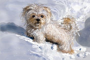 Puppy Digital Art - Puppy in Snow  by Angie Braun