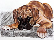 Boxer Puppy Painting Framed Prints - Puppy Love Framed Print by Brenda Stevens Fanning