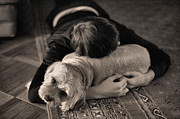 Sleeping Dogs Photo Prints - Puppy Love BW Print by JC Findley