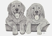 Sisters Drawings - Puppy Love by Patricia Hiltz