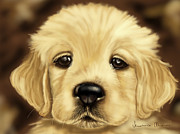 Golden Retriever Dog Framed Prints - Puppy Framed Print by Veronica Minozzi