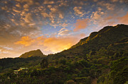 Mountains Art - Pura Vida Costa Rica by Aaron S Bedell