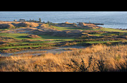 South Puget Sound Prints - Pure Links Style Golf Print by Chris Anderson