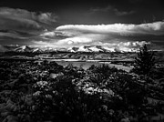 Mt. Massive Photo Metal Prints - Pure Morning Metal Print by Jeremy Rhoades