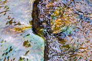 Effervescence Photo Framed Prints - Purl Of A Brook 2 - Featured 3 Framed Print by Alexander Senin