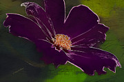 Floral Design Photos - Purple Art Passion by Deborah Benoit