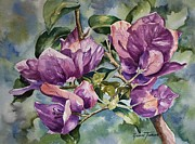 Roxanne Tobaison - Purple Beauties -...