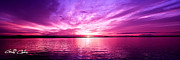Surises Prints - Purple Candy .Sunrise Print by Geoff Childs