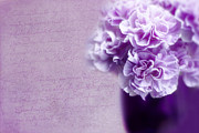 Real Art - Purple Carnations by Rebecca Cozart