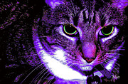 Maideline  Sanchez - Purple Cat