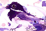 Dawn Derman - Purple Chick