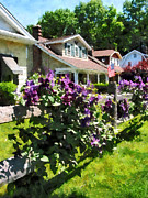 Purple Clematis On Rustic Fence Print by Susan Savad