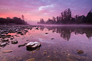Landscapes Posters - Purple Dawn II Poster by Davorin Mance