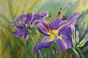 Johanna Axelrod Prints - Purple Day Lily Print by Johanna Axelrod