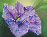 Fauna Originals - Purple by Donna Turbyfill