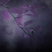 Leaves Mixed Media Prints - Purple Dusk Print by Bonnie Bruno