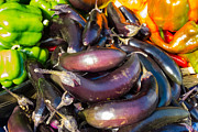 Green Grocer Prints - Purple Eggplant and Colorful Peppers Print by Susan Colby