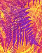 Botanical Art Mixed Media - Purple Fern by Ann Powell
