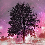 Purple Fever Print by Chris Scroggins