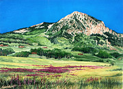Crested Butte Prints - Purple Fields Print by Barbara Jewell