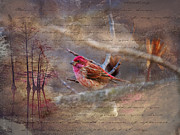 J Finch Art - Purple Finch Perched by J Larry Walker