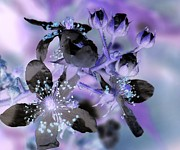 Eunice Miller Metal Prints - Purple Flower Abstract  2 Metal Print by Eunice Miller