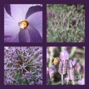 Purple And Green Posters - Purple Flowers Collage Poster by Carol Groenen