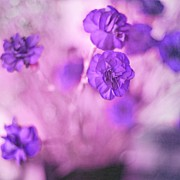 Beautiful Purples Posters - Purple Flowers Poster by Marisa Horn