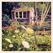 Purple Photos - Purple Garden Shed by Brooke Ryan