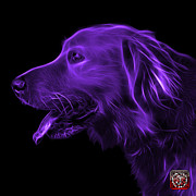 Golden Retriever Mixed Media - Purple Golden Retriever - 4047 F by James Ahn