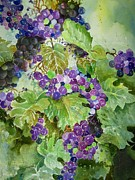 Grape Vines Originals - Purple Grapes by Marilyn  Clement