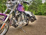 Harley Davidson Photos - Purple Harley by Thomas Young
