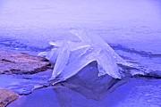Purple Ice Print by Randi Shenkman