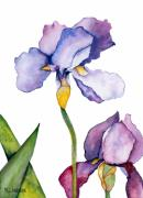 Multicolored Paintings - Purple Iris leaning toward the Sun by Sandy Linden