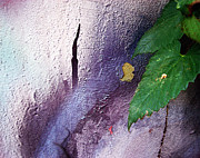 Inessa Burlak - Purple Leaf